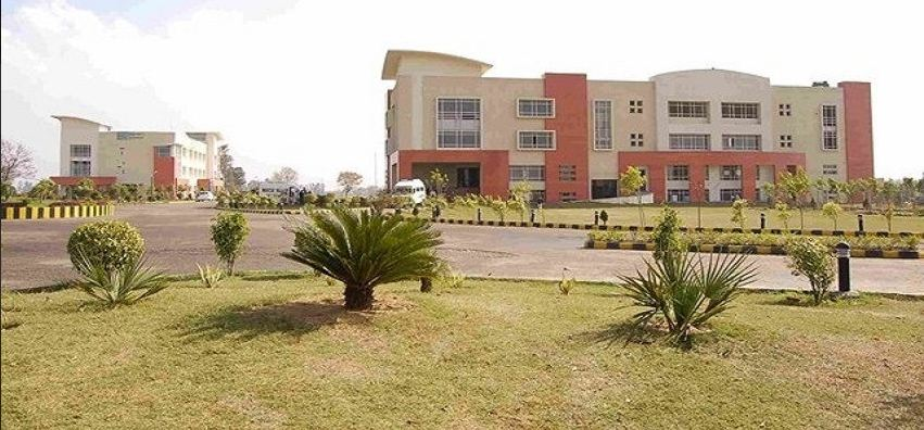 Innocent Hearts Group of Institutions