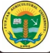 Logo of College Of Agricultural Engineering & Technology Punjab Agricultural University